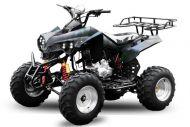 Quad 250cc warrior 10'' automatique offroad